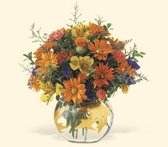 Bouquet marguerite, alstro, statis et autre