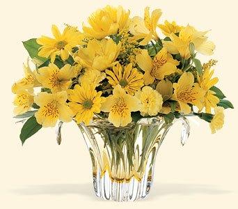 Bouquet marguerite, alstro et autre