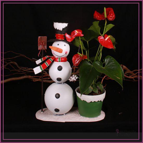 Anthurium avec bonhomme de neige