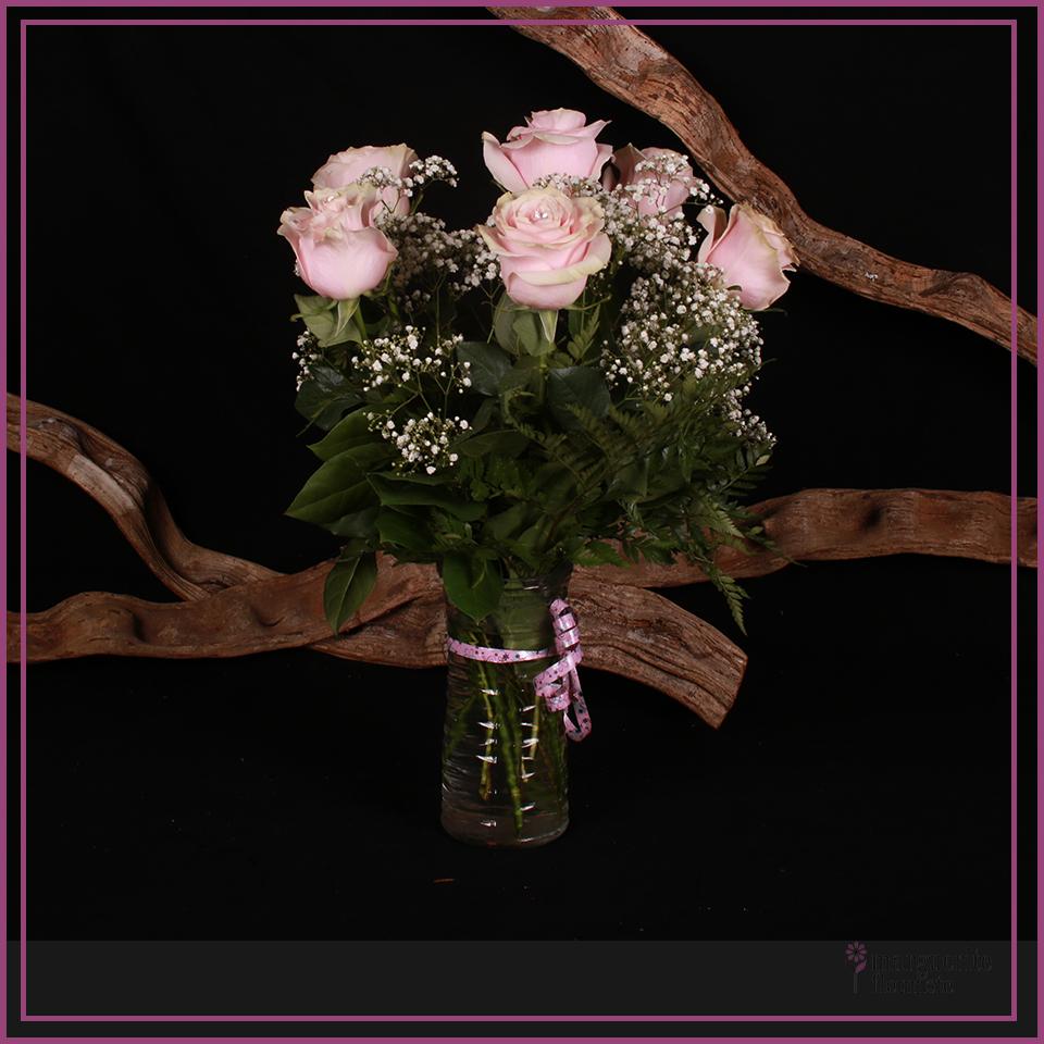6 Roses rose