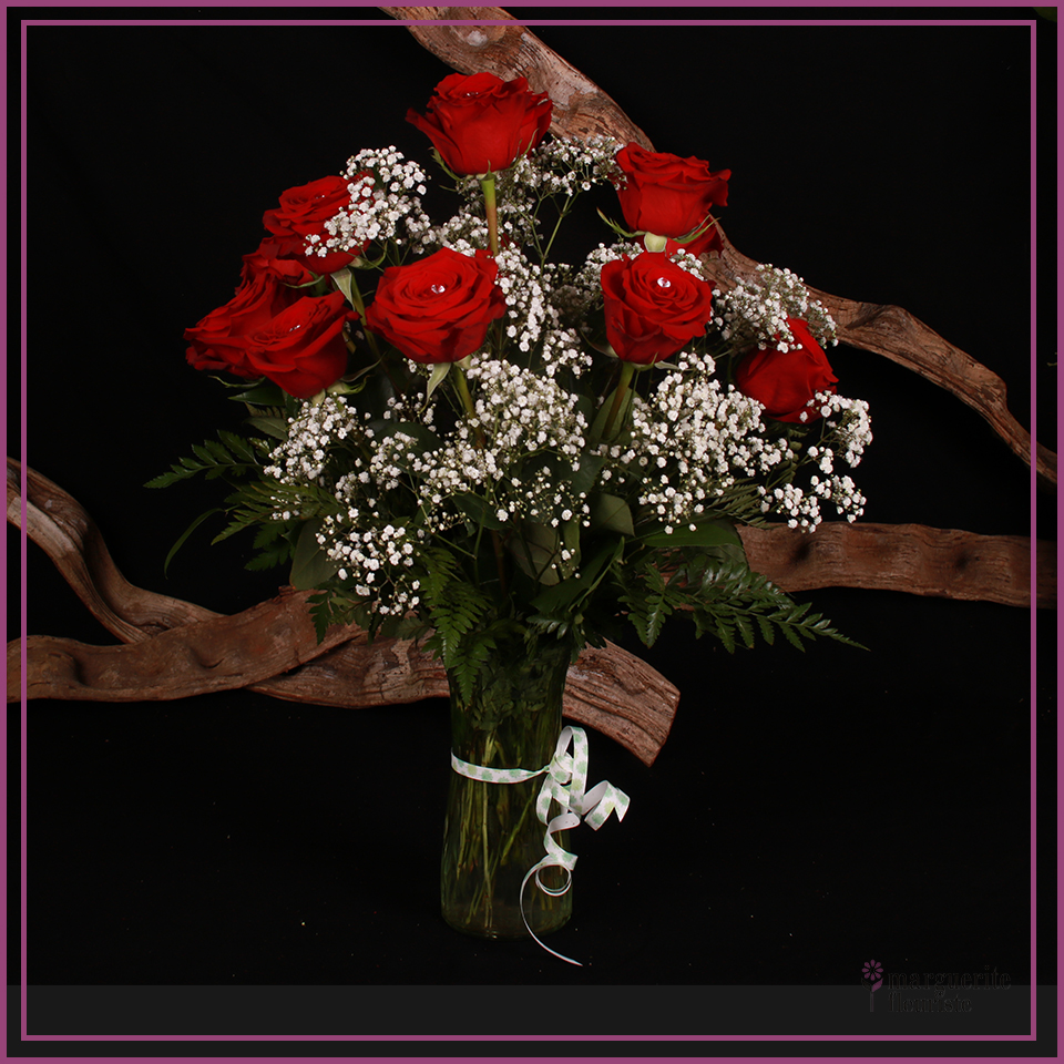 12 roses rouge