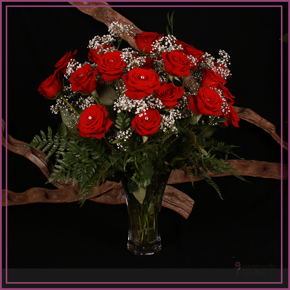 24 roses rouge